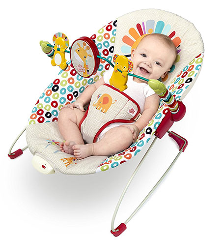 62809d632483 Top 12 Baby Bouncers Reviews 2018